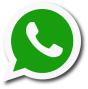 log whatsapp